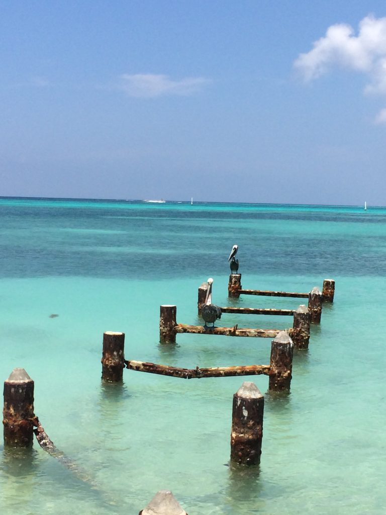 20 Survival Tips For Living on a Tropical Island - Another ...